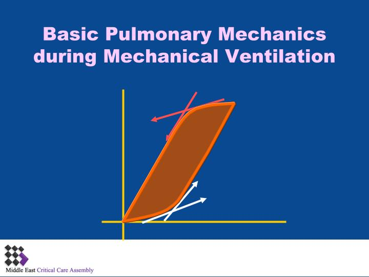basic pulmonary mechanics during mechanical ventilation n.
