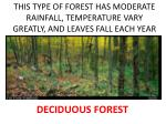 this type of forest has moderate rainfall temperature vary greatly and leaves fall each year