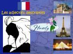 les adjectifs descriptifs14