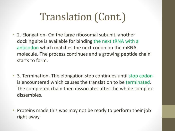 Translation (Cont.)