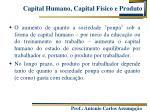 capital humano capital f sico e produto