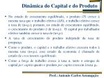 din mica do capital e do produto