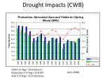 drought impacts cwb