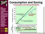 consumption and saving3
