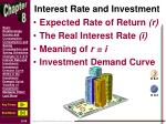 interest rate and investment
