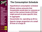 the consumption schedule