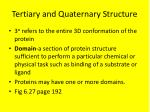 tertiary and quaternary structure