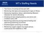 mt s staffing needs