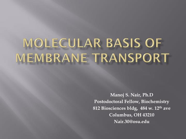 molecular basis of membrane transport n.