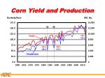 corn yield and production