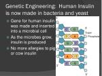 genetic engineering human insulin is now made in bacteria and yeast