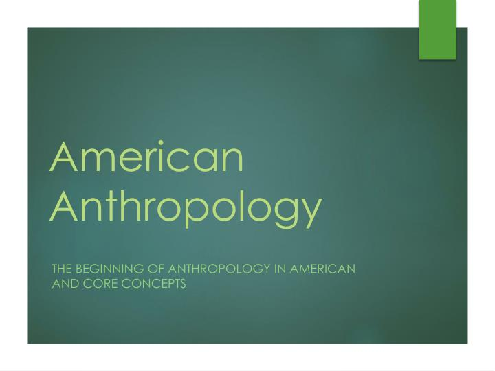american anthropology n.