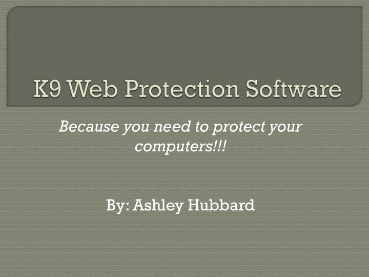 k9 web protection software n.