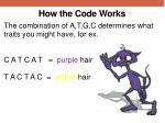 how the code works