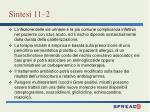 sintesi 11 2