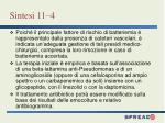 sintesi 11 4