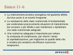 sintesi 11 6