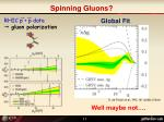 spinning gluons