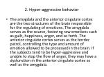 2 hyper aggressive behavior