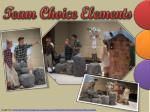 team choice elements6