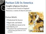 puritan life in america