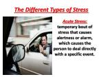the different types of stress