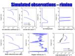 simulated observations riming