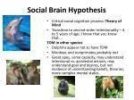 social brain hypothesis3