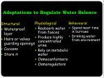 adaptations to regulate water balance1