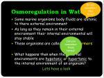 osmoregulation in water