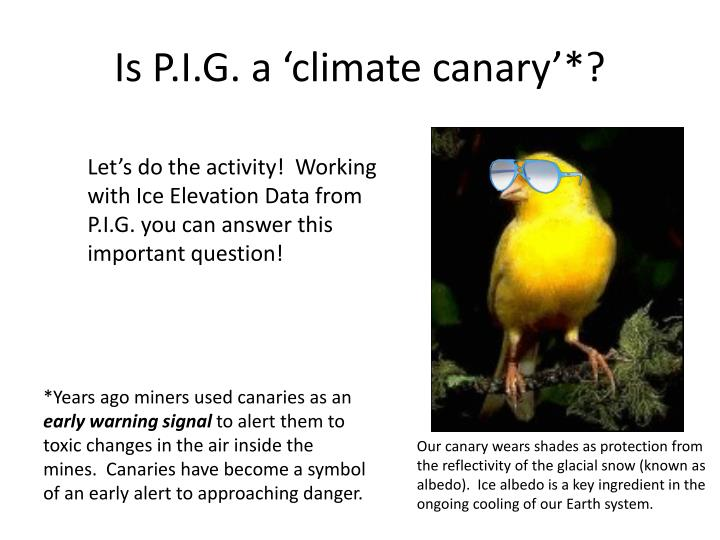 Is P.I.G. a 'climate canary'*?