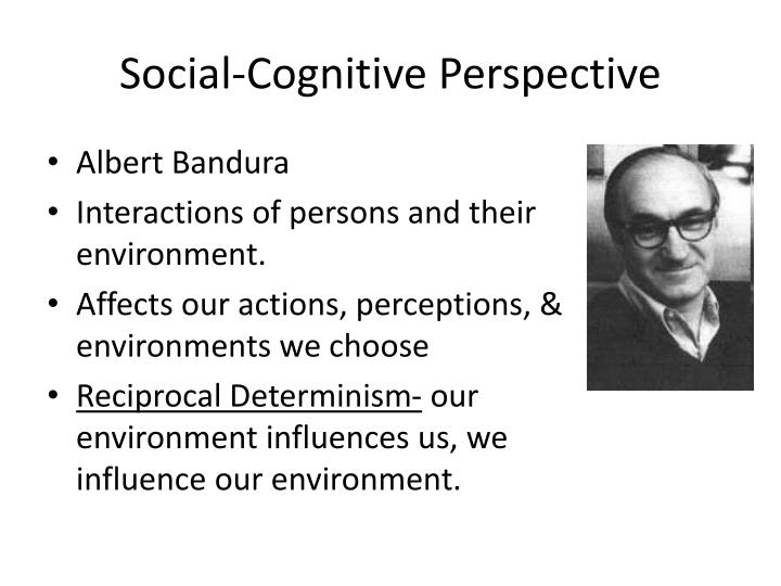 social cognitive perspective n.