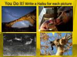 you do it write a haiku for each picture
