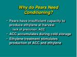 why do pears need conditioning
