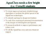 aguaclara needs a few bright i e cornell students