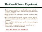 the grand cholera experiment