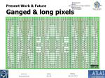 present work future ganged long pixels1