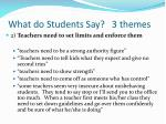 what do students say 3 themes1
