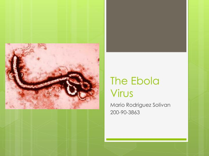 a description of the ebola virus scourge and the different strains The strain of yersinia pestis that brought the black death to europe is likely extinct infections of the ebola virus to some circulating strains.