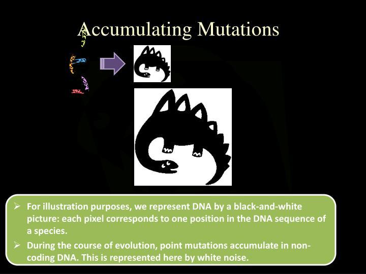 Accumulating Mutations