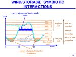 wind storage symbiotic interactions