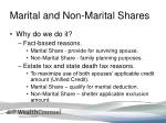 marital and non marital shares