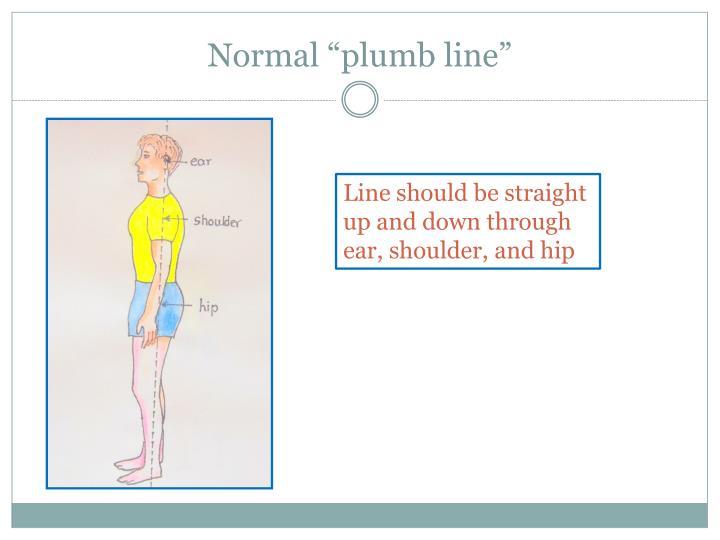 "Normal ""plumb line"""