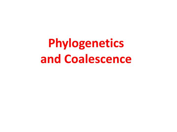 phylogenetics and coalescence n.