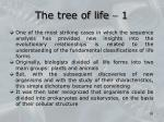 the tree of life 1