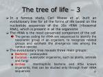 the tree of life 3