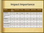 impact importance
