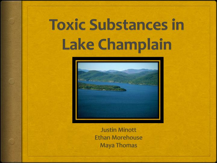 toxic substances in lake champlain n.