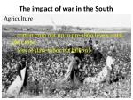 the impact of war in the south1