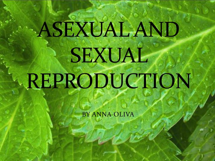 asexual and sexual reproduction n.